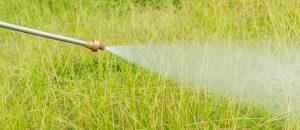 除草剤の発がん性を否定するための論文作りに製造メーカー・モンサントの科学者が大きく関与した可能性