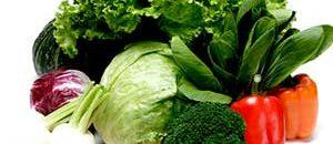 腸の善玉菌を増やす食事と生活習慣の話し