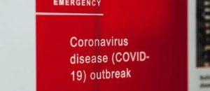 コロナウイルス 世界の現状 動物も感染?